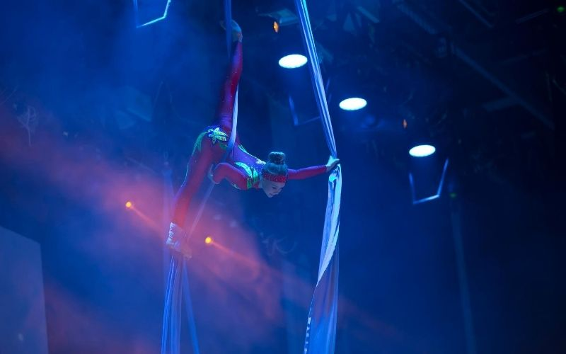 Trapeze artist in air at show.