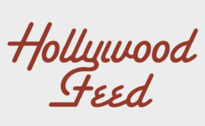 Hollywood Feed 1 300x184